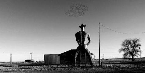 bigcowboy