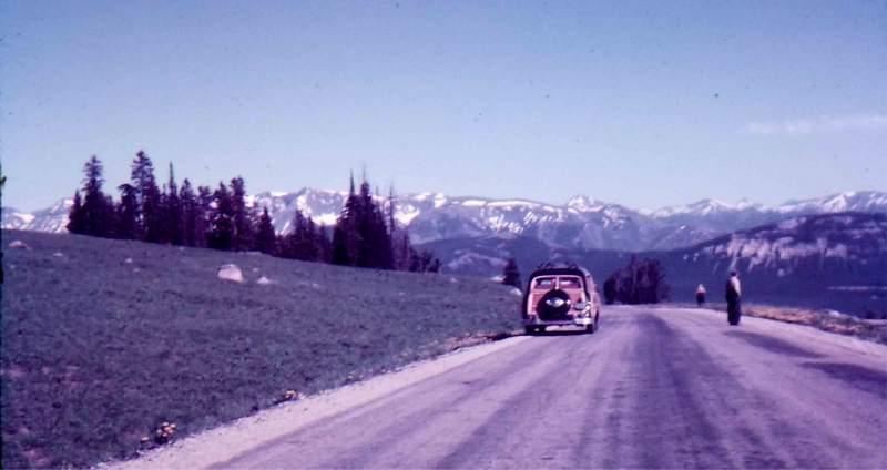 montana54