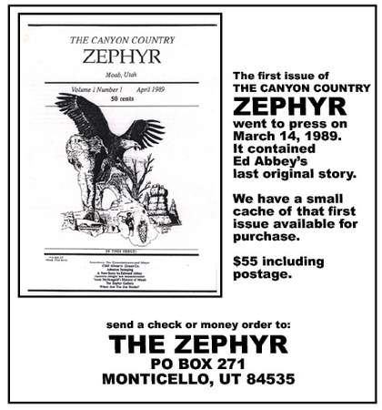 ZEPHYR-V1N1 copy
