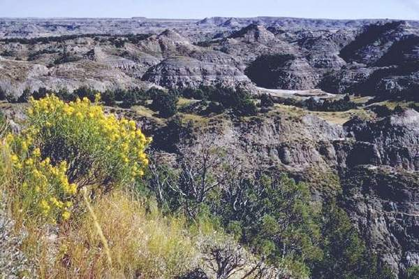 Theodore Roosevelt National Park.