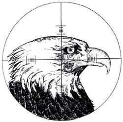 a-eagle2 copy