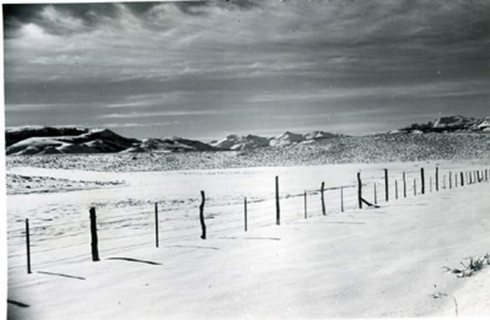Winter Scene. Great Basin, Nevada
