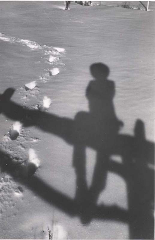 Herb Ringer Self-Portrait with Shadow.
