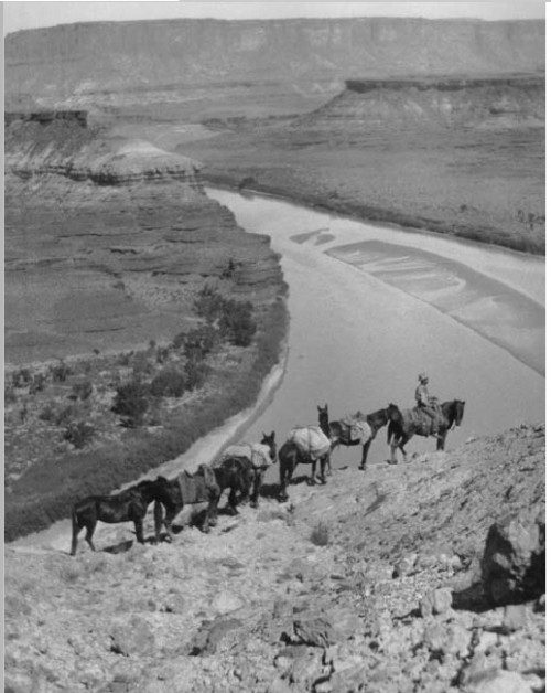 Uncle Eph and horse pack on Hardscrabble Hill