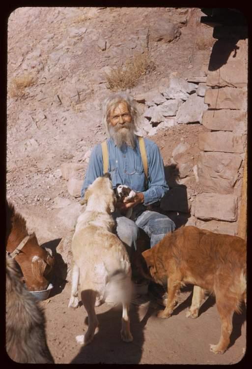 goat1000A