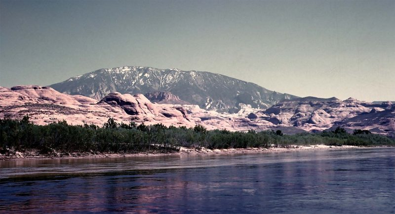 view from Colorado River below confluence with San Juan River; snow-capped Navajo Mountain (elevation 10,346 ft) lies ten miles to southeast; spring, 1961. (K. Ross collection)