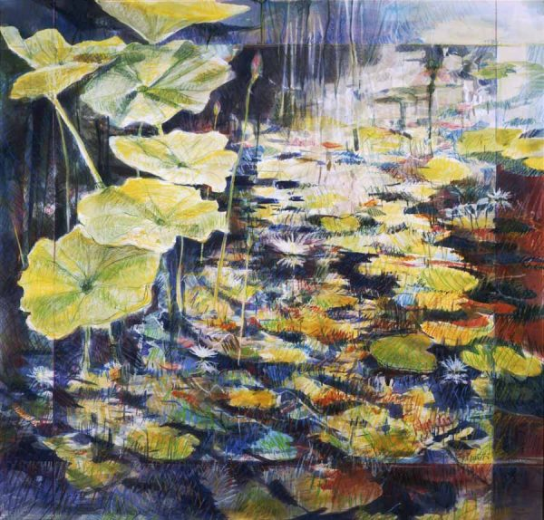 Frank Gerrietts Lily pads