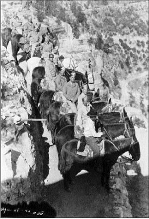 Enlisted men on leave ride mules down the Bright Angel trail. Photo c/o Grand Canyon National Park Museum Collection
