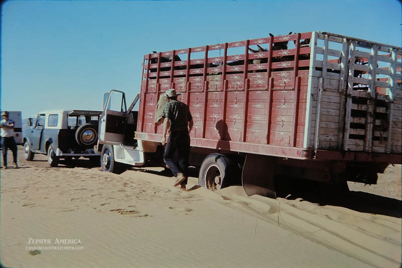 Stuck in the sand on the Hans Flat Road. MAY 1970. Photo by Edna Fridley