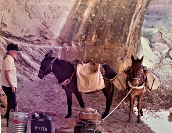 1974 Becky Brock with Pete's mules, Enid and Red, hauling water to Perfect Kiva Stabilization crew. Photo by BLM
