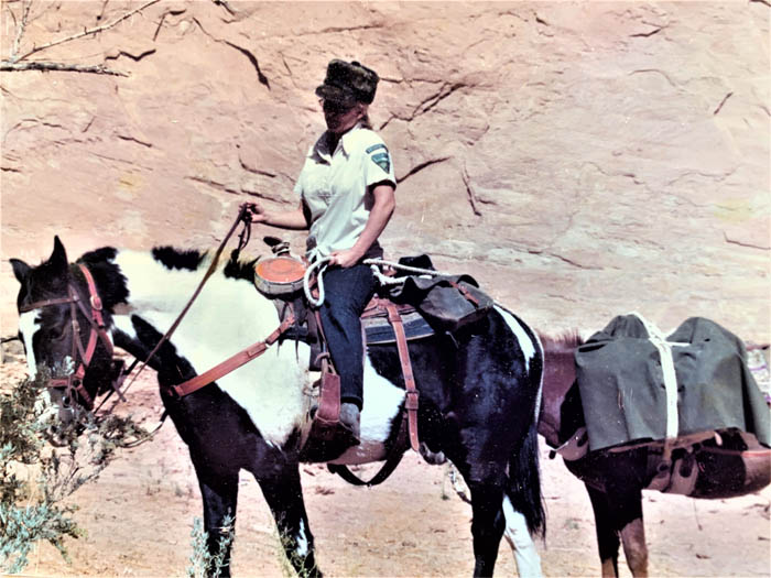 1974 Becky Brock on Tsetso, Pete's horse, at Goat on a Bicycle Ruin in Grand Gulch.  BLM photo