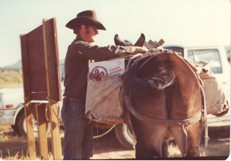1974 Pete Steele preparing for pack trip. Mule is tied to Grand Gulch wooden sign at Kane Spring.  Bears Ear butte in background.  BLM photo