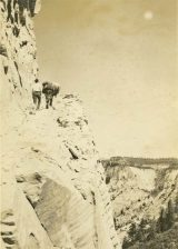 Everett Ruess was photographed high on a cliff with one of his burros. Photo from Special Collections, J. Willard Marriott Library, The University of Utah, Everett Ruess Family Photograph Collection P1194N01_01_018.